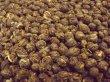 画像1: 【お試し茶】ジャスミン茶(茉莉龍珠)5g (1)